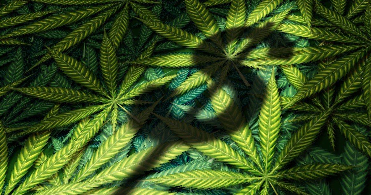 California, Colorado, Florida, Washington, Michigan, Massachusetts & Arizona States Should Have Billion-Dollar Marijuana Markets by 2022