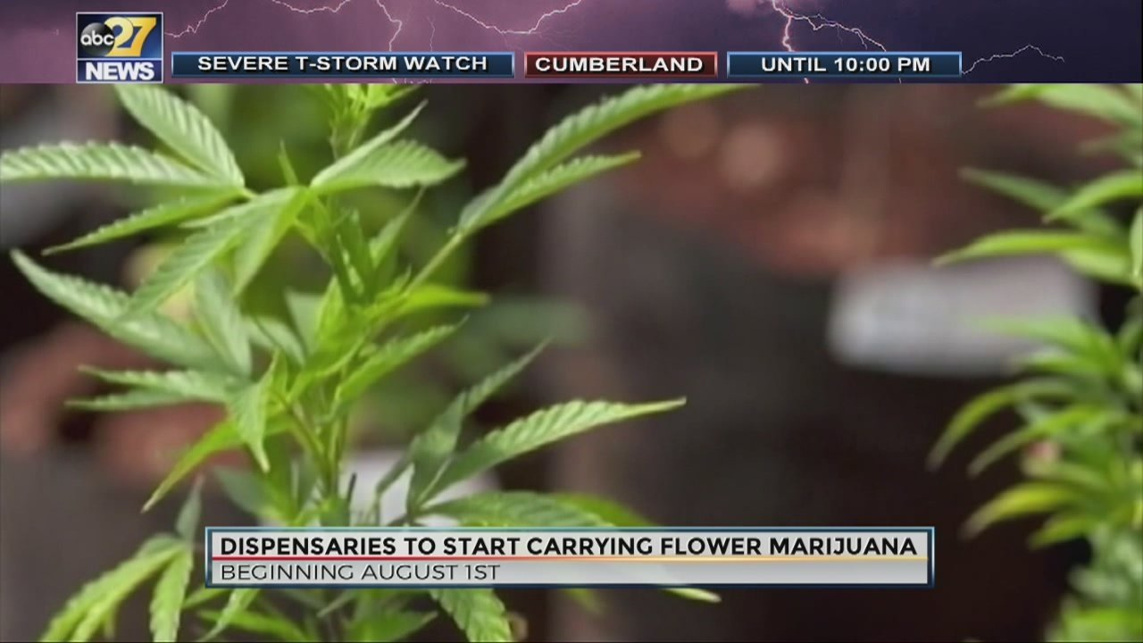 Dry leaf medical marijuana available to Pennsylvanians for the first time, beginning next week.