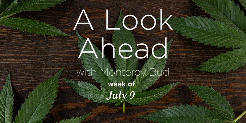 Hawaii's Governor Sandbags Law to Allow Marijuana As Opioid Remedy