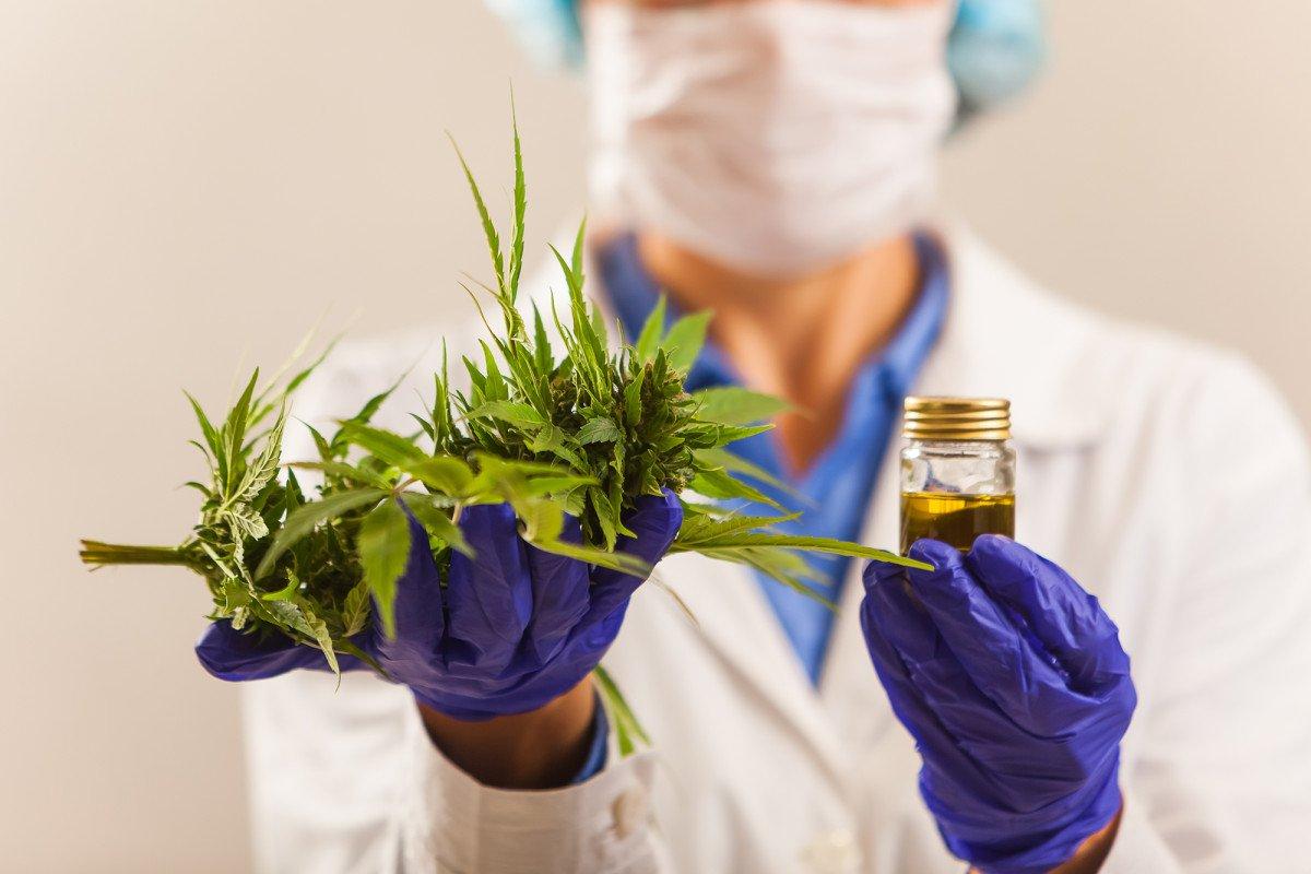 Marijuana may help fight cancer
