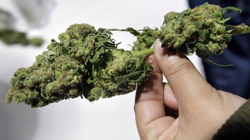 Why aren't any recreational marijuana dispensaries open yet?