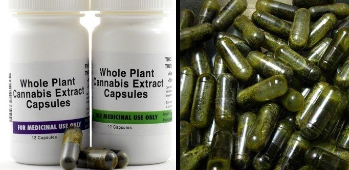 Cannabis Capsules are powerful pain killer.