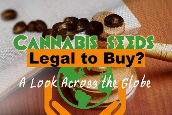 Cannabis Seed Laws By Country