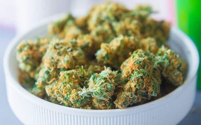 Managing Melanoma with Cannabis