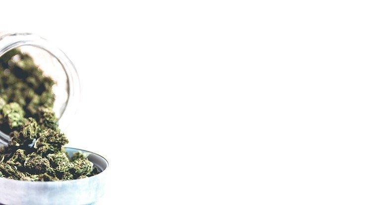 Oregon's Cannabis Industry 'Out of Control,' Florida Wants Medical Marijuana Smoking Ban Upheld