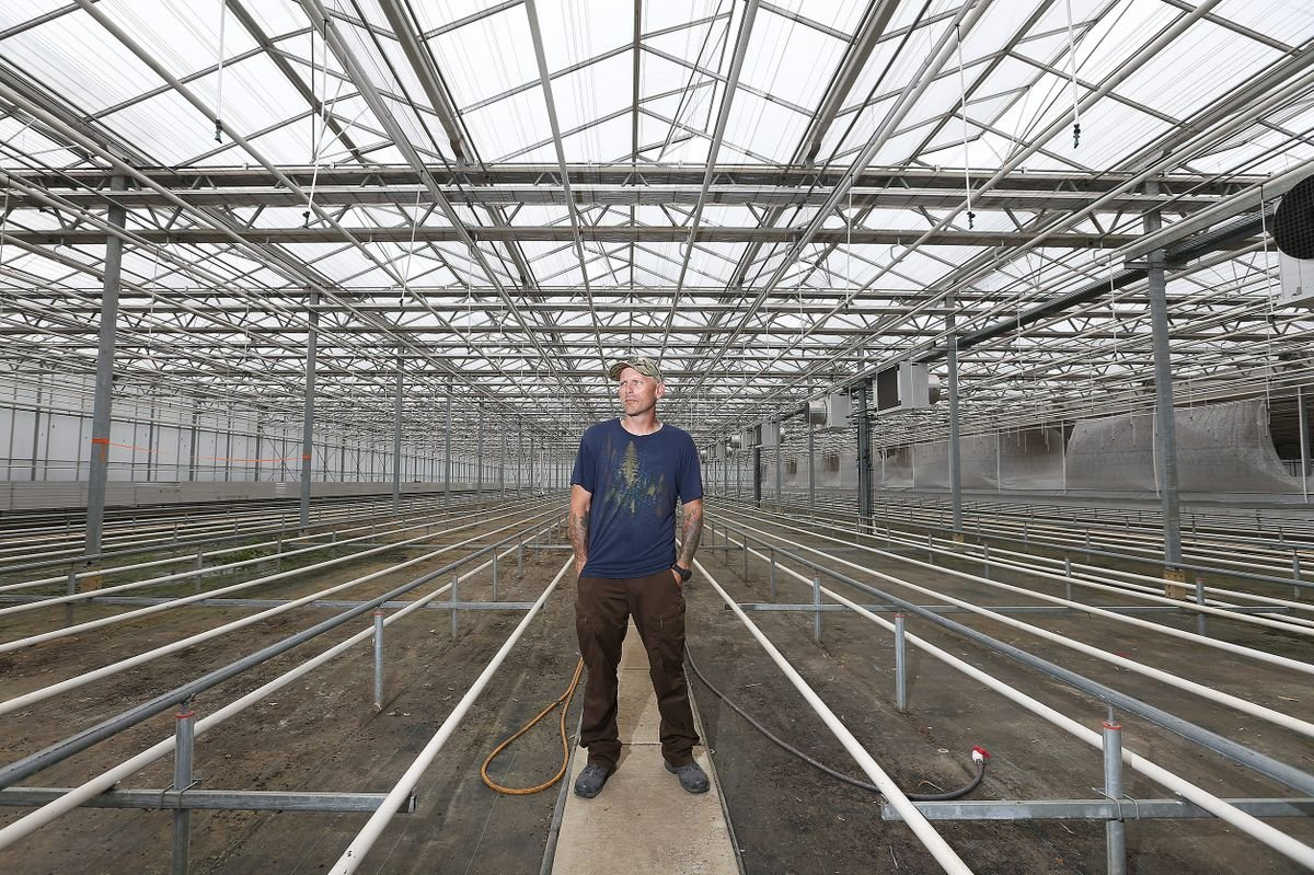 Weed to replace orchids in gigantic South Jersey greenhouse as demand for marijuana jumps