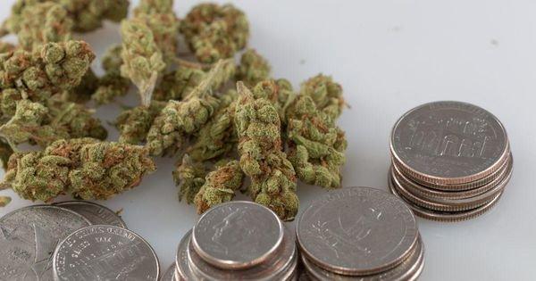 Wells Fargo Closes Florida Politician's Account Due To Marijuana Donations