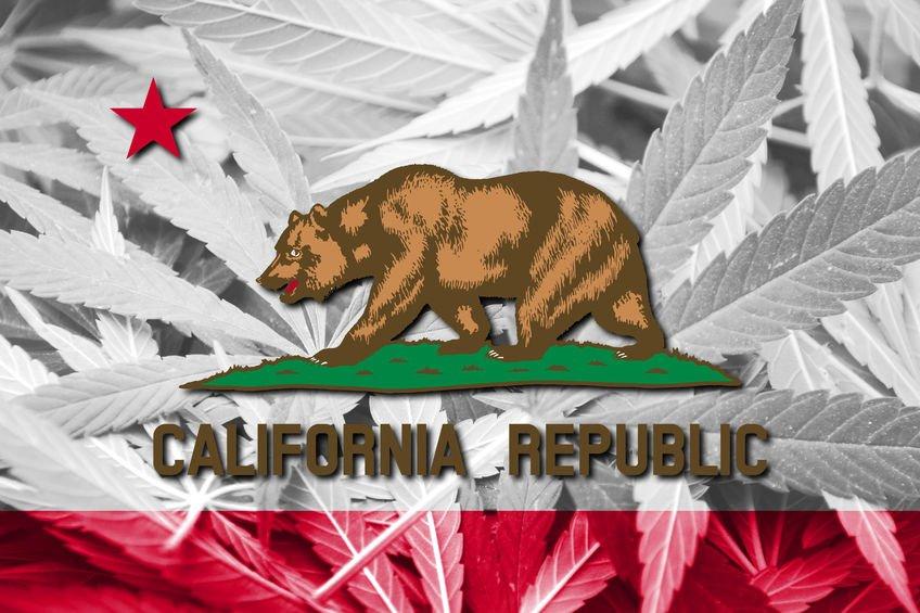 California marijuana enforcement continues: Humboldt County busts illegal grow
