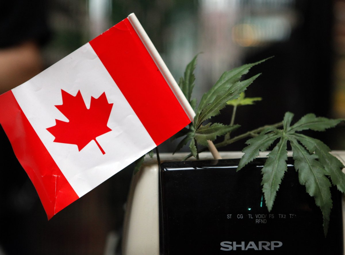 Canadian pot users could get flagged at U.S. border
