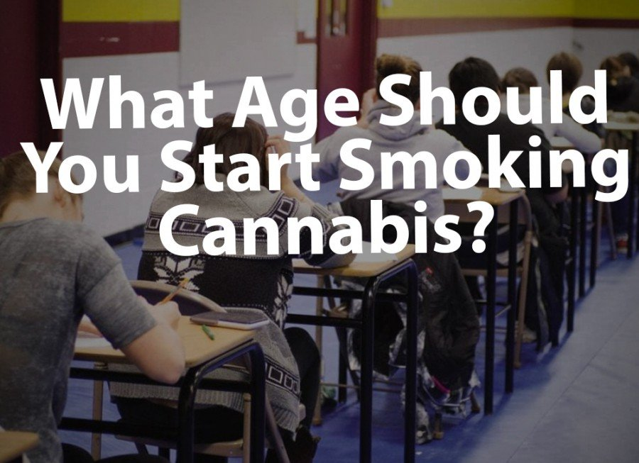 Legal Age for Cannabis: When to Start Smoking? - Videos - Puff Puff Post