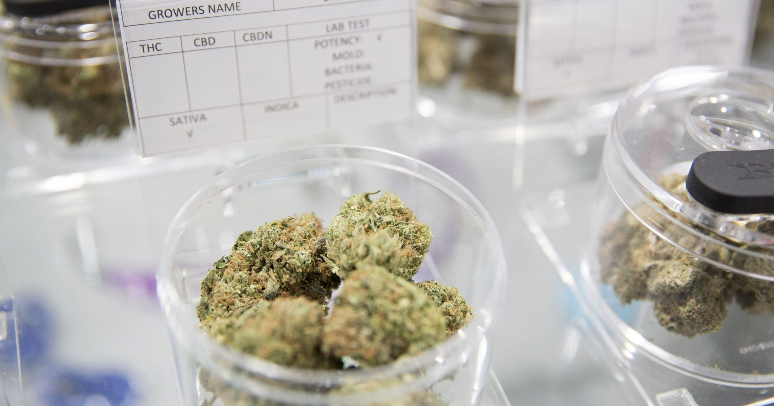 NJ to resume prosecution of marijuana offenses, legal weed hazy