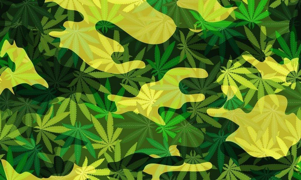 POLITICS Congress Removes Military Veteran Medical Marijuana Provision From Funding Bill