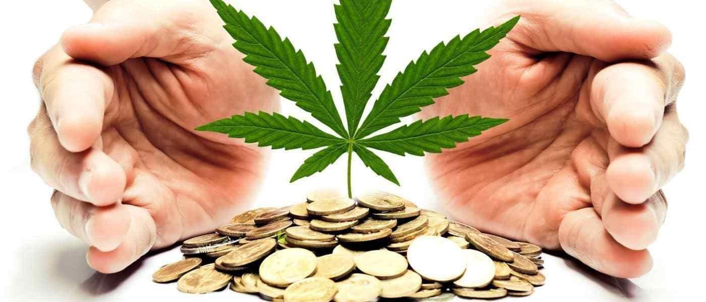 Alternative Harvest Smokin' Hot, TILT Could Skyrocket, & What Hemp Legalization Could Look Like