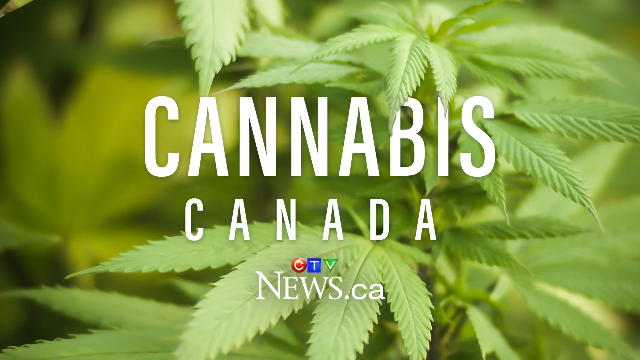 Cannabis Canada: Snapshots from across the country