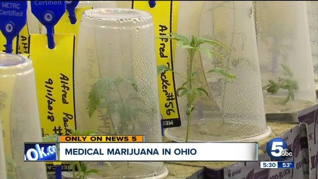First steps towards Ohio's medical marijuana happening in cultivation facilities across the state