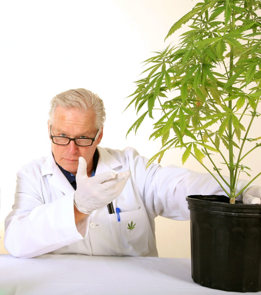 How to grow Marijuana at your Home