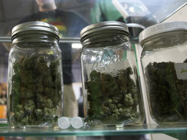 Marjuana linked to 'unbearable' sickness across US as use grows following legalisation