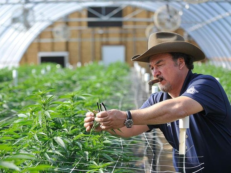 PHOTOS: A tour of Jim Belushi's cannabis farm along the Rogue River