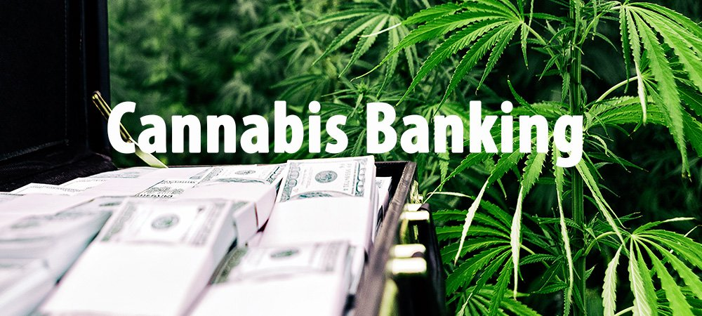 IRS Is Reportedly Overwhelmed By Cash Payments From Cannabis Businesses