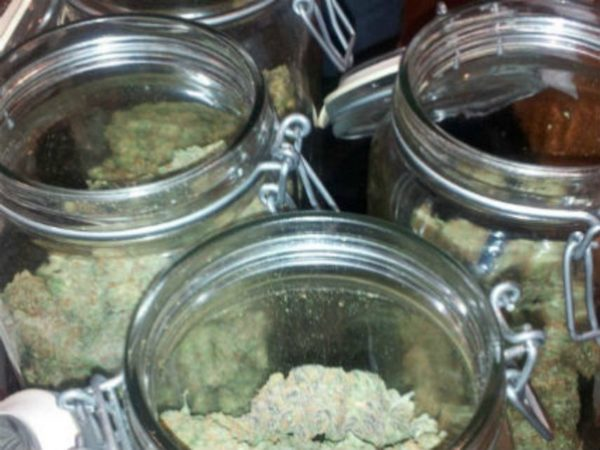 It's Time for Congress to Acknowledge the Collapse of Pot Prohibition