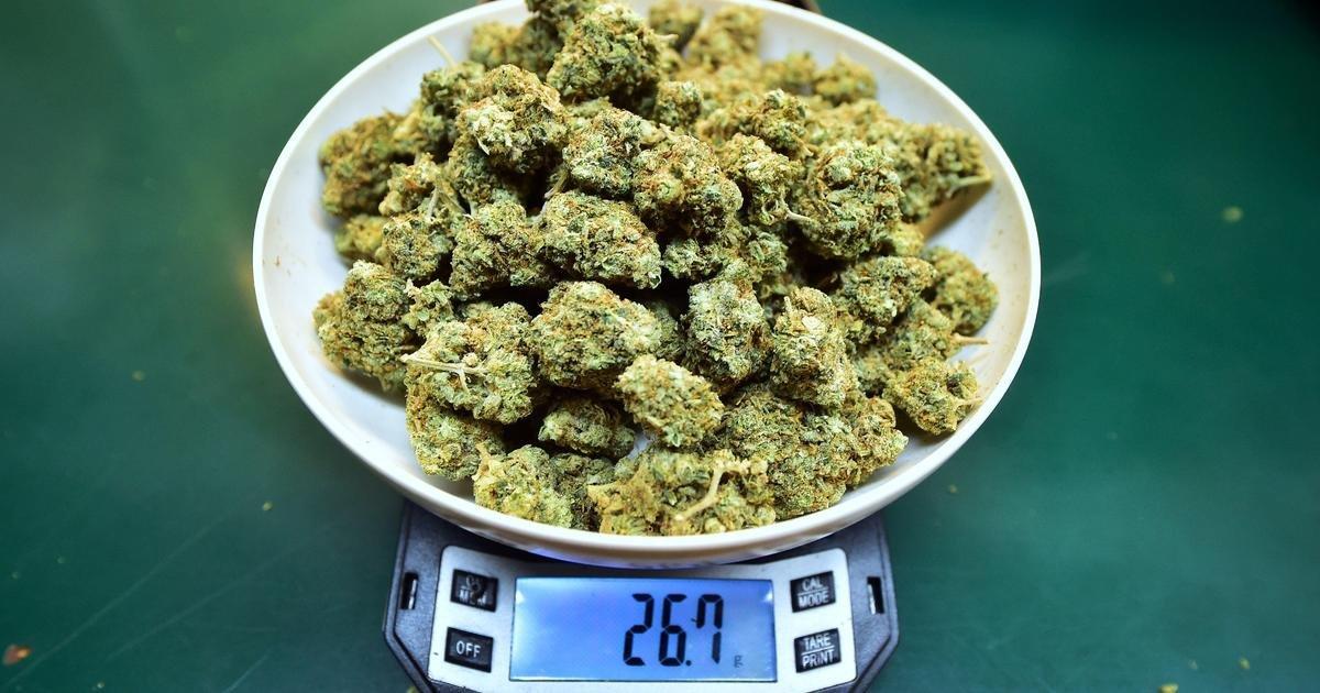 Marijuana Stocks Go Sky-High After Jeff Sessions Resigns
