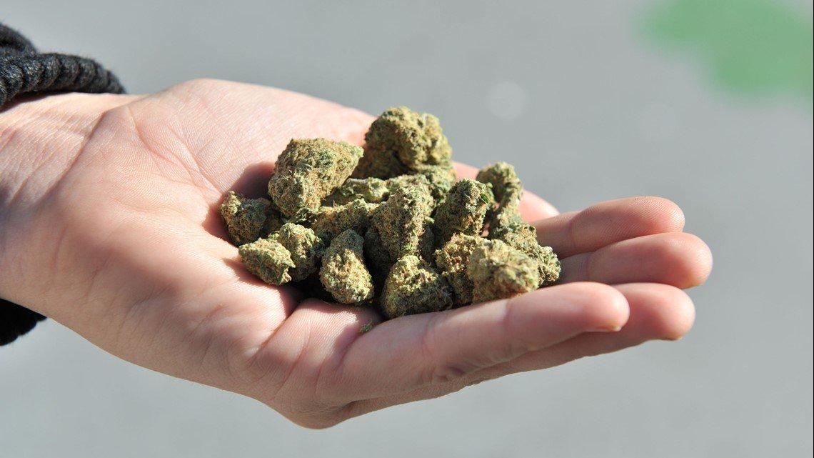 Could Minnesota be next to legalize marijuana?