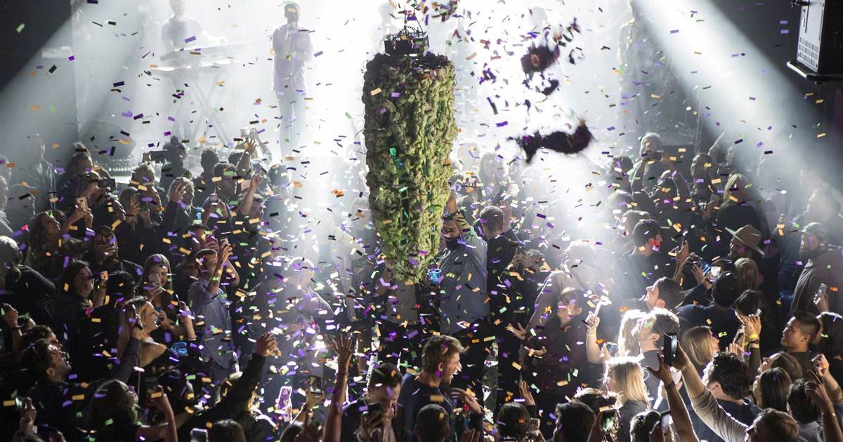 Legal cannabis industry had a successful year. Racking in $10 billion.
