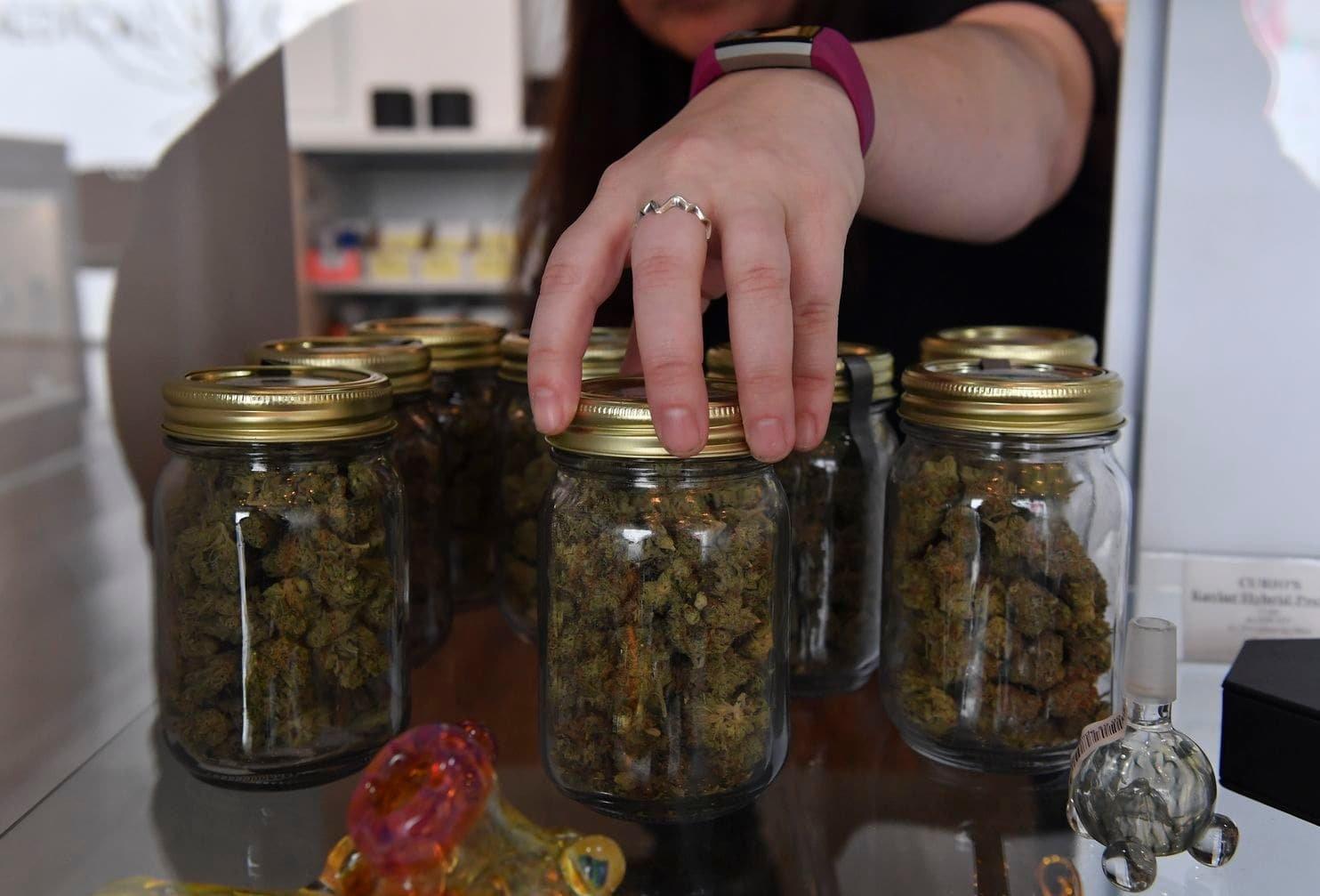 Marijuana education or illegal drug-selling? Instagram's not sure.