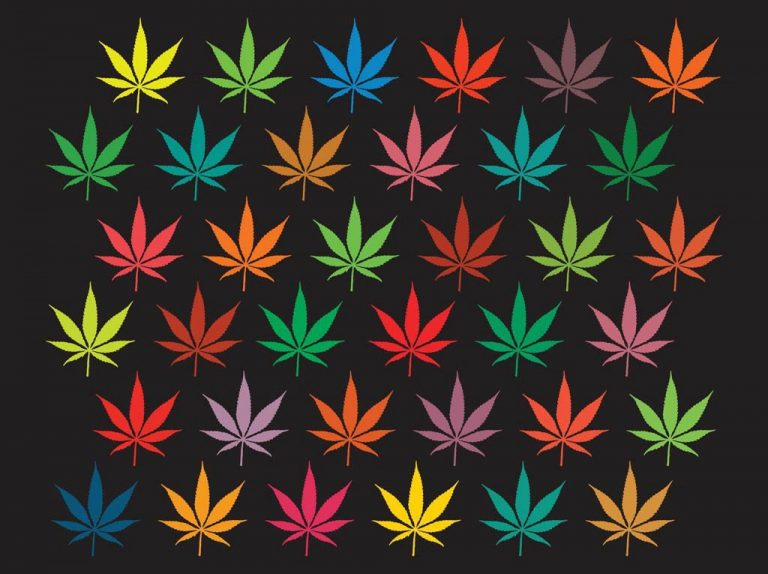 When will Illinois legalize marijuana? – Gather Activism – Medium