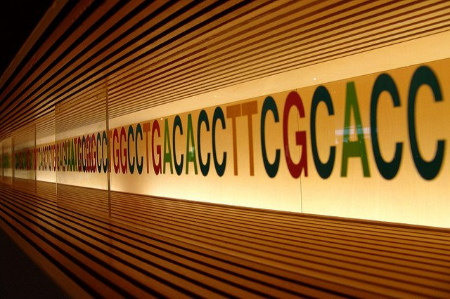 Your DNA Can Determine Whether You Pass a Drug Test - Prof of Pot