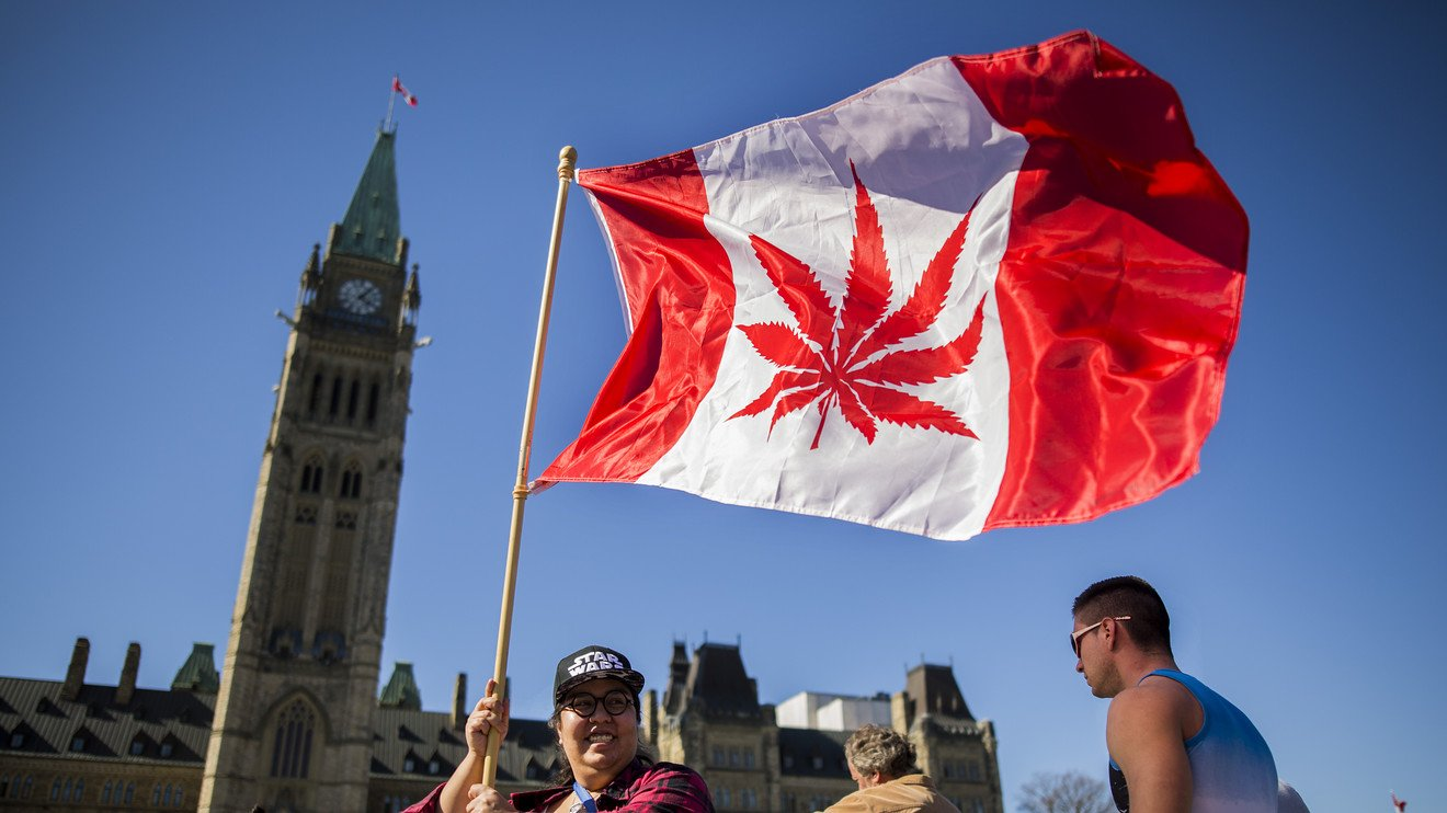 Cannabis stocks mixed as Canada says legalization hasn't led to expected spike in consumption