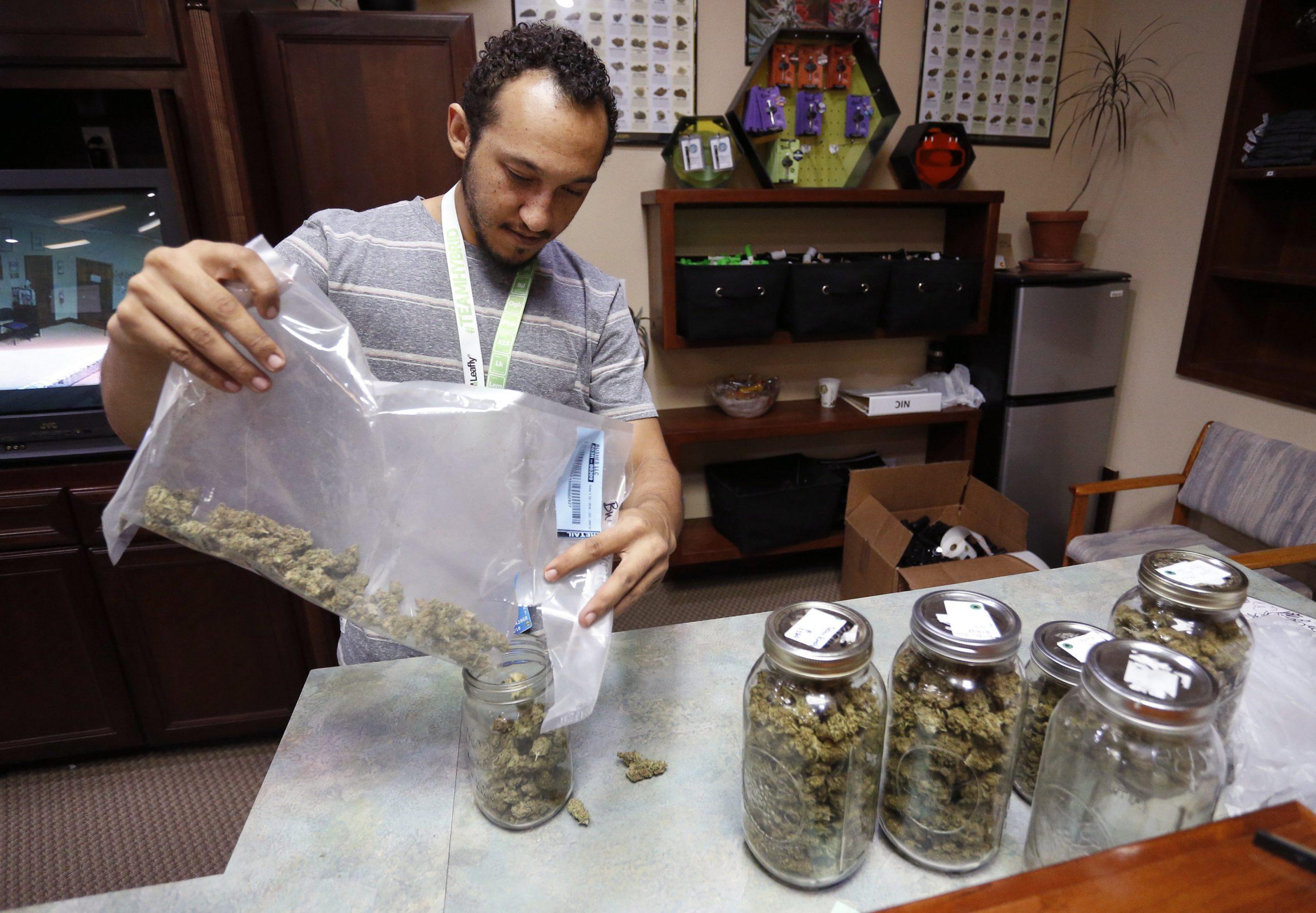 Chronic Pain Tops The Reasons Patients Seek Medical Marijuana