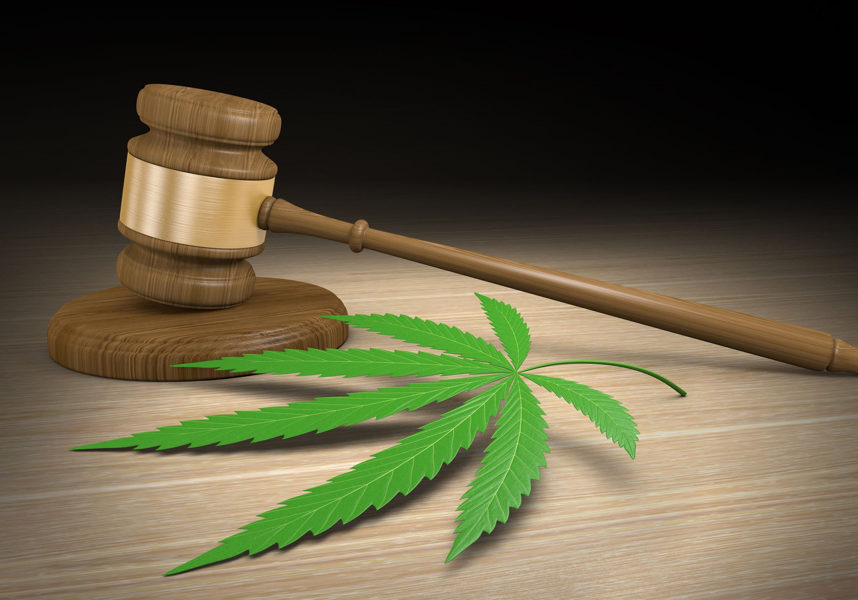L.A. marijuana consultants settle legal battle - sort of