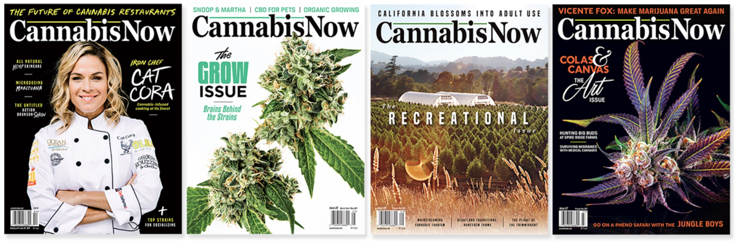 """""""Cannabis is Still Five Years Away From Catching up to Where the Pharmaceutical Companies are or the Big Brands of the World the Nike's and the Budweiser's..."""""""