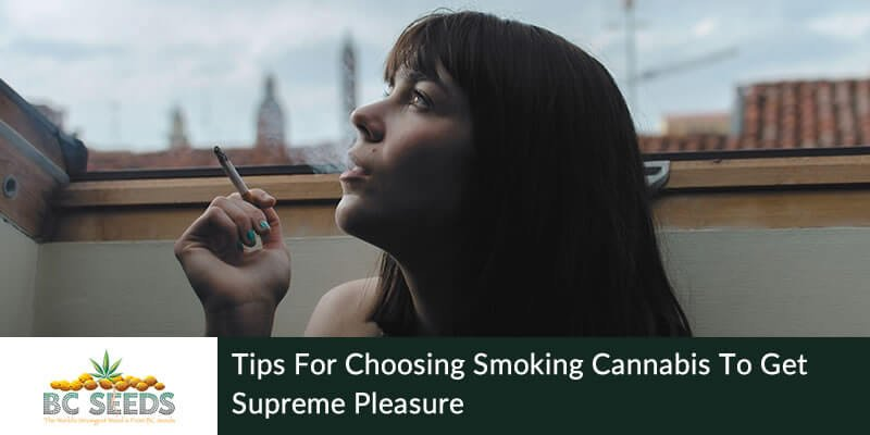 How To Smoke Weed For Maximum Enjoyment?