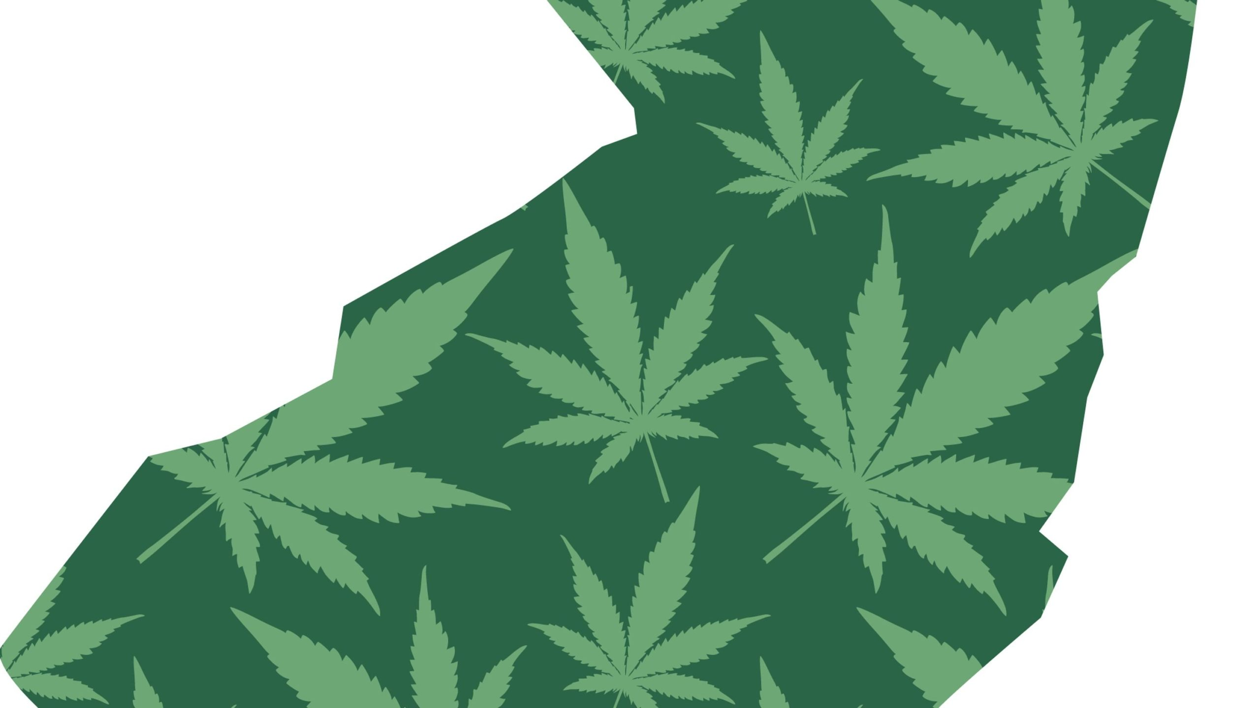 NJ marijuana legalization: What we learned about legal weed vote