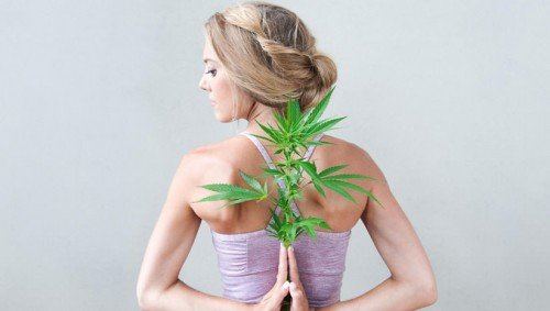 OrbitPost - Why Cannabis Yoga Is The Latest Health Trend