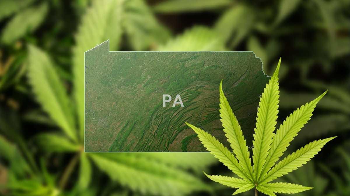 PA senators introduce bill to legalize recreational marijuana use