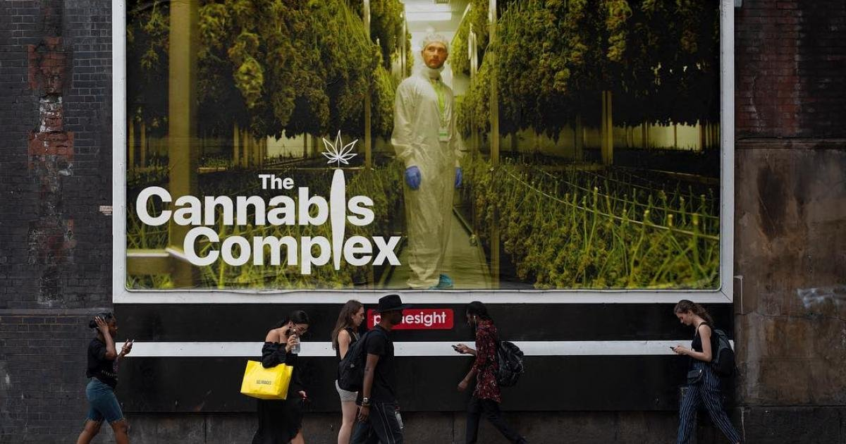 """Christian Borys documents the last days of prohibition in Canada in """"The Cannabis Complex"""""""