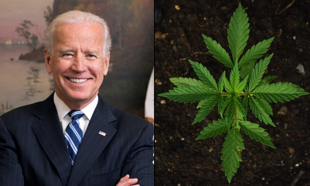 Where Joe Biden Stands On Marijuana -- The former senator, who served as chair of the influential Judiciary Committee that helped shape U.S. drug policy during an era of heightened scaremongering and criminalization, was among the most prominent Democratic drug warriors in Congress for decades.