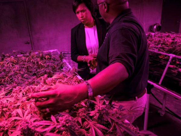 D.C. Mayor Muriel E. Bowser will announce legislation Thursday to legalize and regulate recreational marijuana dispensaries in the nation's capital, setting up a potential showdown with the federal government.