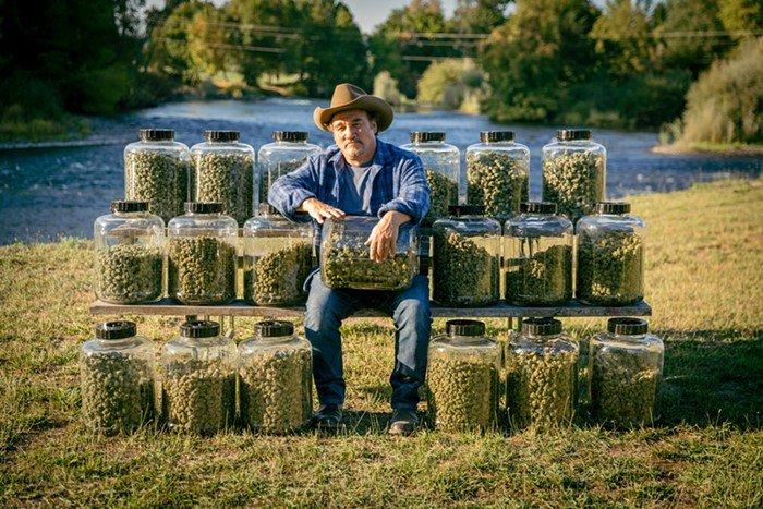 Jim Belushi: Medical Marijuana Would Have Saved My Brother's Life