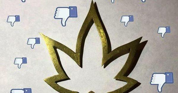 Media Veteran Suing Facebook Over Cannabis Ban, Represented Pro Bono By NORML's David Holland