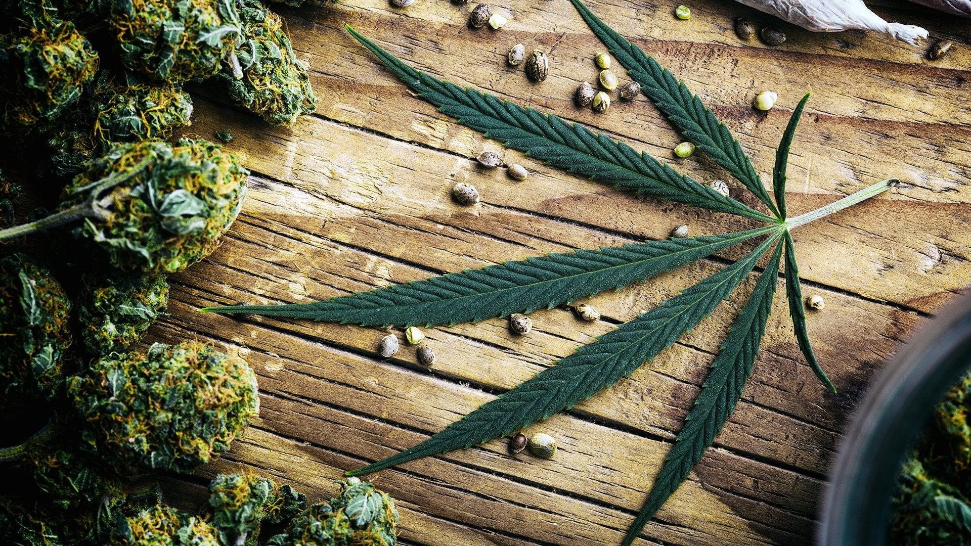 Марихуана лук аллергия от марихуаны