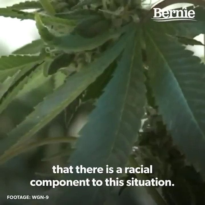 "Bernie Sanders Tweets Congratulations to Illinois for legalizing marijuana and expunging 770,000 marijuana-related cases: ""It is time to legalize marijuana nationwide."""