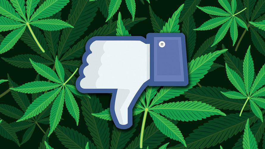 Despite the marijuana industry's rapid growth, the social media platforms with the most users – Facebook and Facebook-owned Instagram, in particular – have proved inconsistent about their official policies surrounding MJ related business pages.