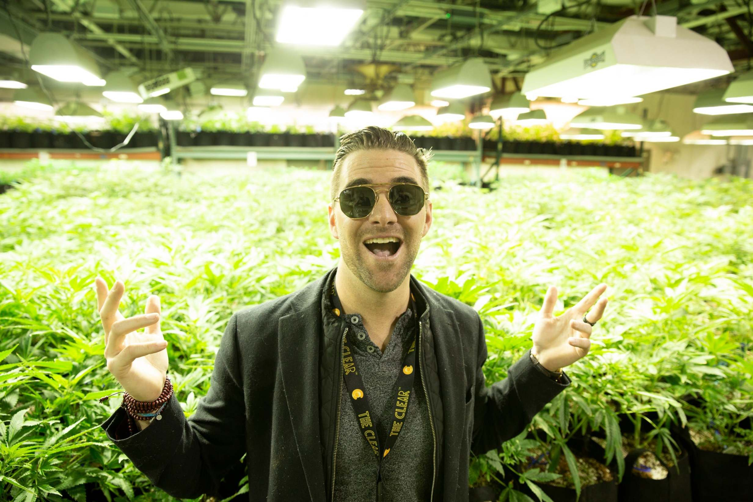 Here's my growhouse: The venture capitalist turned cannabis millionaire