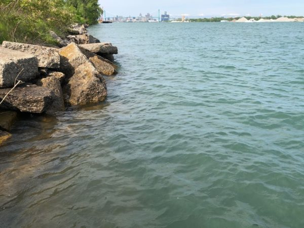 Canadian tethered to 265 pounds of marijuana found unconscious in Detroit River