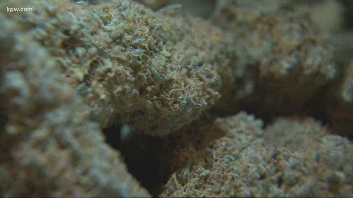 Oregon marijuana sales breaks record in April