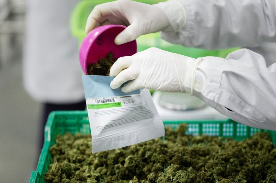 3 years after legalization, Uruguay's recreational cannabis market 'tangible success'
